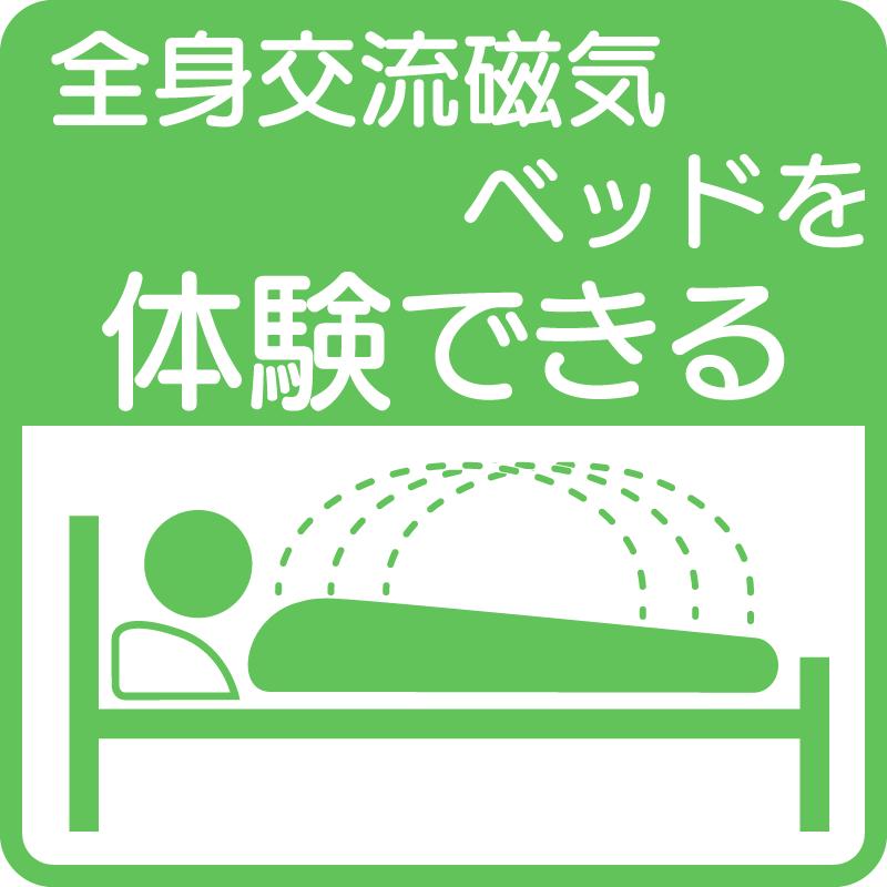 全身交流磁気ベッド